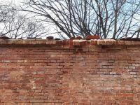 b_200_150_16777215_00_images_stories_grafiken_aktuelles_Festung_im_Stadtgebiet_14-03-2021_k-Werk-Caponniere-6_Futtermauer-Sanierung_2021-03-07_2.jpg